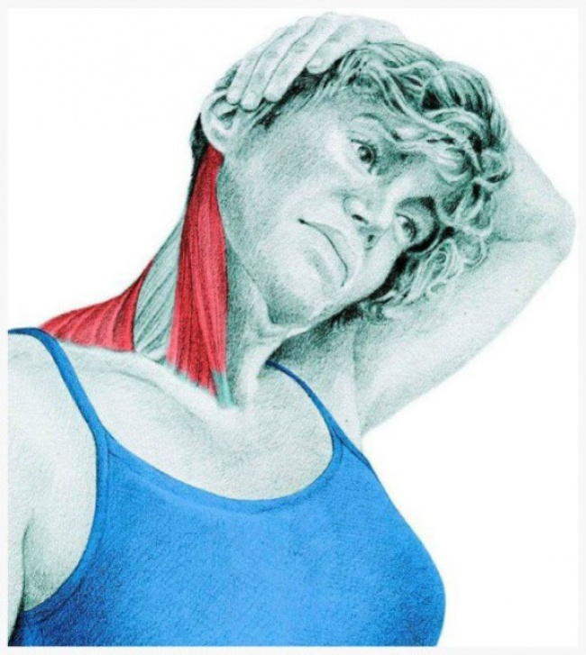 Lateral side flexion of the neck with hand assistance
