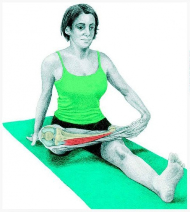 Seated pigeon pose