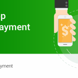 whatsapp digital payment